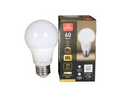 Ampoule DEL A19 Blanc chaud 9 W