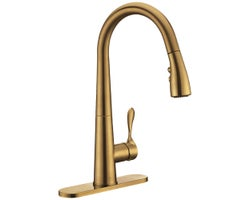 Saverio Pull-Down Kitchen Faucet