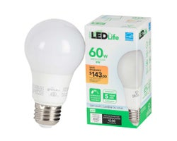 Ampoules DEL A19 Lumière du jour 8 W