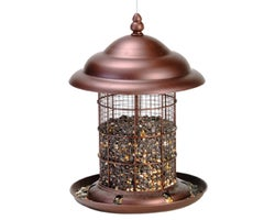 Bird Feeder 9 in.