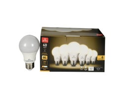 A19 Warm White LED Light Bulb 6 W (6-Pack)
