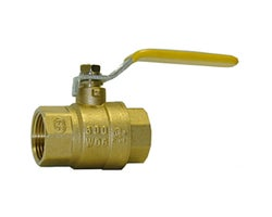 Ball Valve 1 in. x 1 in. FPT