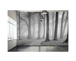 13-1/2 ft. x 9 ft. The Winding Path Wallpaper Mural in Black and White