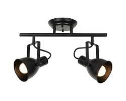 Carey 2-Light Track Lighting