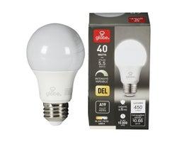 A19 LED Light Bulb Cool White 5.5 W