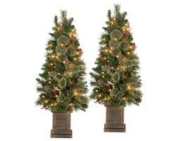 Arbres de Noël en pot 3,5 pi