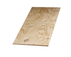 Standard Fir Plywood 5/8 in. x 4 ft. x 8 ft.