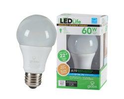 Ampoule DEL A19 Blanc doux 10 W