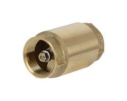 Clapet antiretour pour pompe à jet pour puits 1 1/4 po