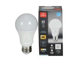 Ampoule DEL A19Blanc froid 10 W