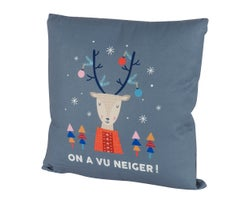 Coussin «On a vu neiger!» 173/4po