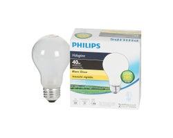 Ampoules DEL A19, 29 W