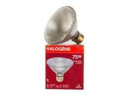 Ampoule-réflecteur halogène PAR30, 75 W