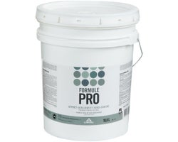 Formule Pro Latex Primer-Sealer & Undercoat 18.9 L