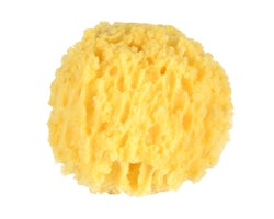 Natural Sea Sponge - 6 in.