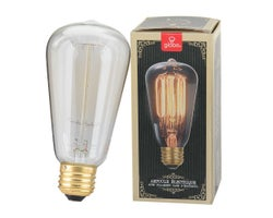Ampoule incandescente , Vintage S60, 60 W