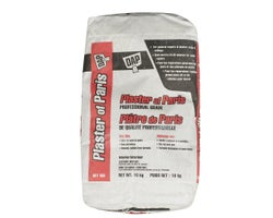 Plaster of Paris - 10 kg
