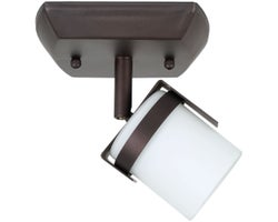 Baltik 1-Light Ceiling Mount