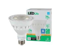 Ampoule-réflecteur DEL PAR30, 11 W
