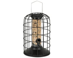 Squirrel-Proof Bird Feeder, 11 po