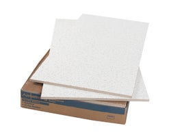 Fire Guard Suspended Ceiling Tiles  2 ft. x 4 ft.