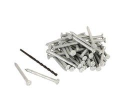 Gripcon Concrete Nails - 4 in. (Box of 100)