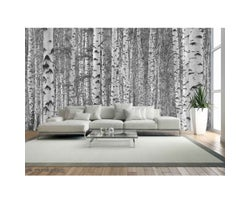 12 ft. x 9 ft. Birch Tree Forest Wallpaper Mural in Black and White