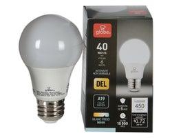 Ampoule DEL A19 Blanc froid 6 W