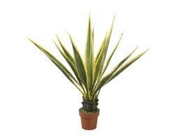 Large Agave Artificial