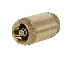Clapet antiretour pour pompe à jet pour puits 1 po