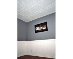 Polo Ceiling Panels 2 ft. x 4 ft.