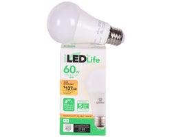 Ampoule DEL  A19 Blanc chaud 10 W