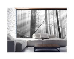 12 ft. x 8 ft. Old Forest Wallpaper Mural in Black and White
