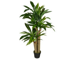 Artificial Dracaena