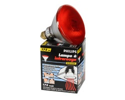 Lampe chauffante 175 W