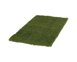 Dune Lawn Carpet 2 ft. x 3 ft.