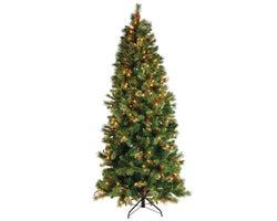 Arbre de Noël illuminé Sierra 7 pi